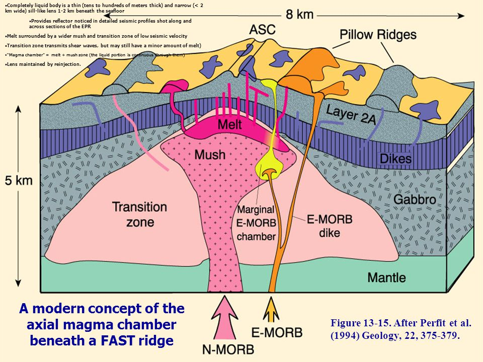 A modern concept of the axial magma chamber beneath a FAST ridge