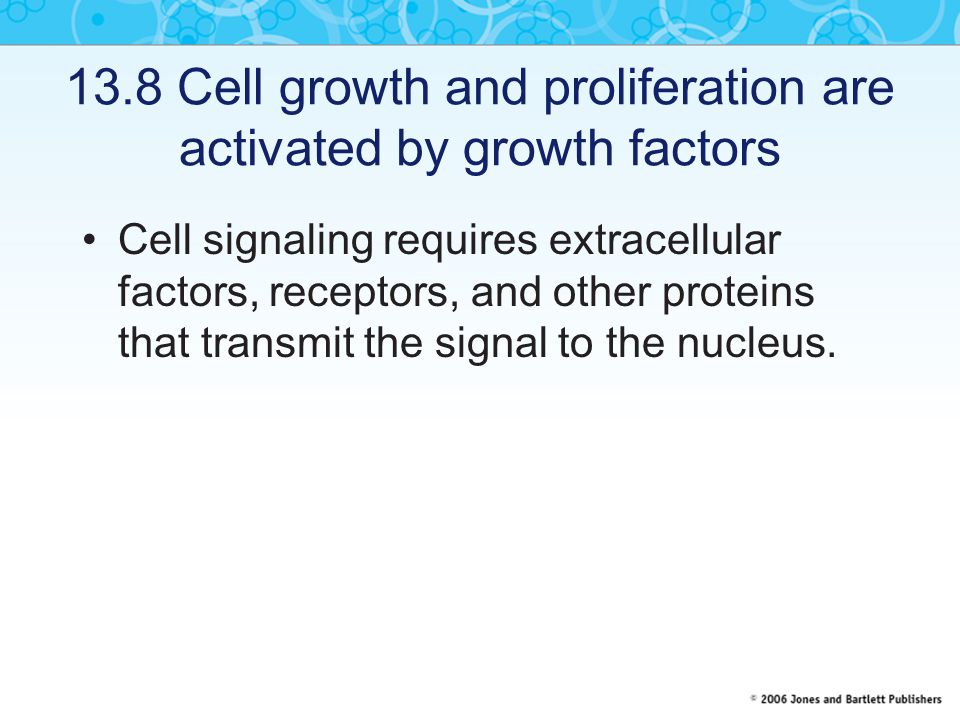 13.8 Cell growth and proliferation are activated by growth factors