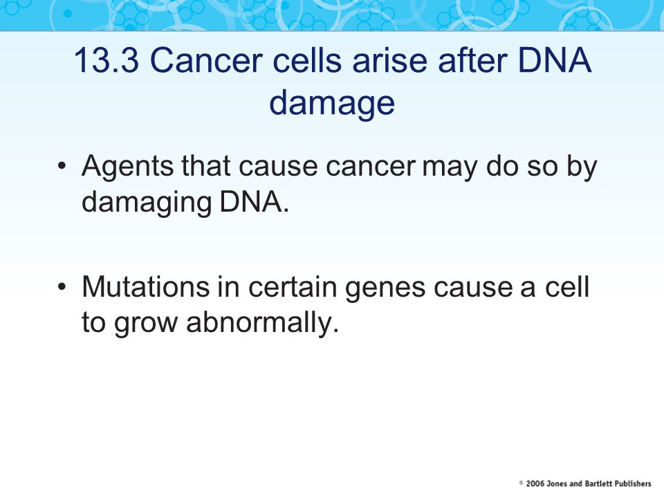 13.3 Cancer cells arise after DNA damage