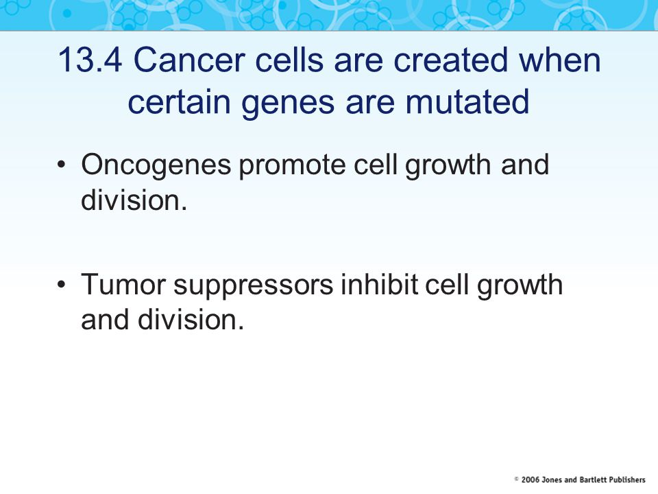 13.4 Cancer cells are created when certain genes are mutated