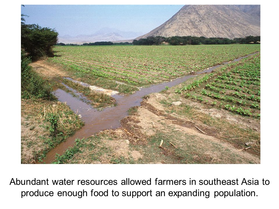 Abundant water resources allowed farmers in southeast Asia to produce enough food to support an expanding population.