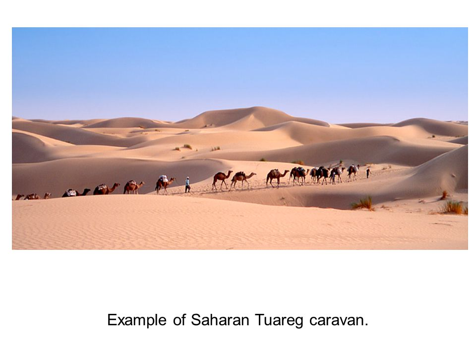 Example of Saharan Tuareg caravan.