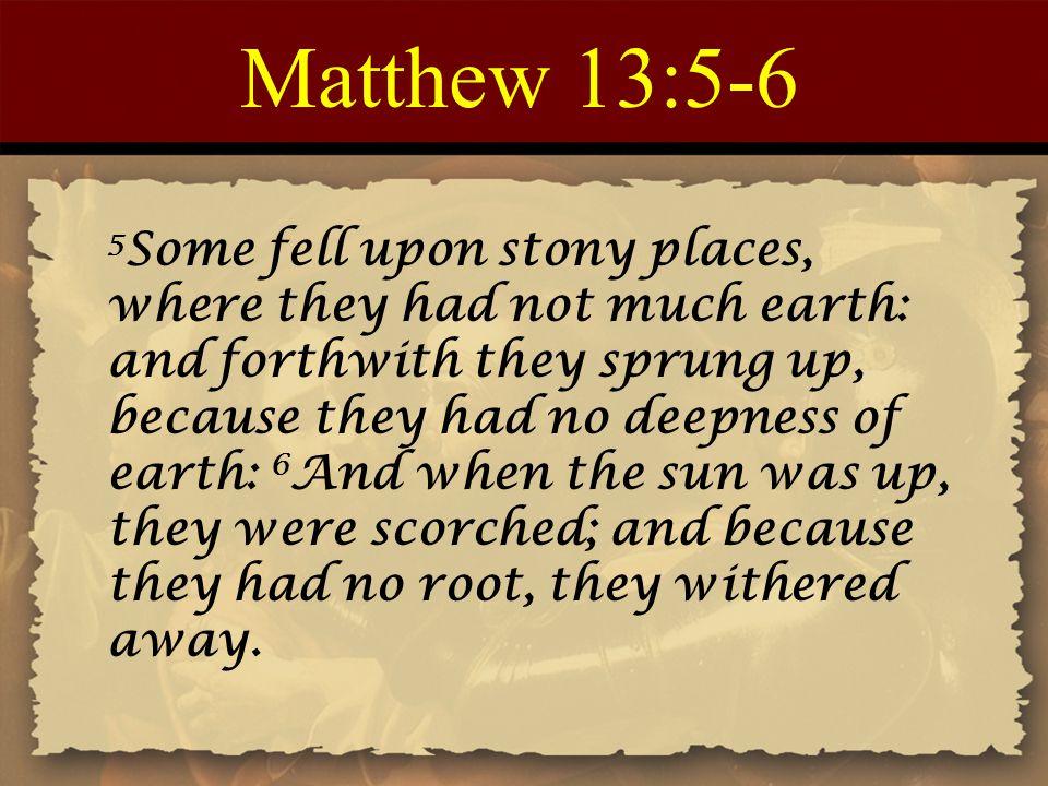 Matthew 13:5-6
