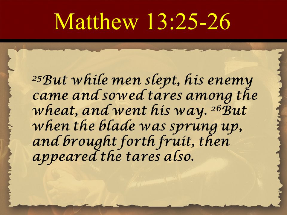 Matthew 13:25-26