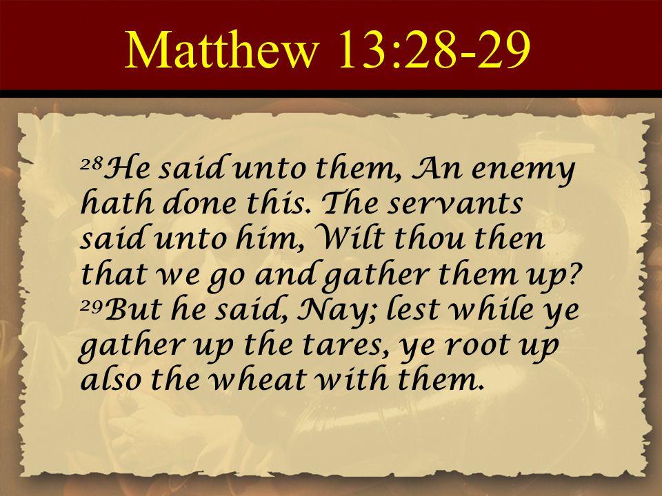 Matthew 13:28-29