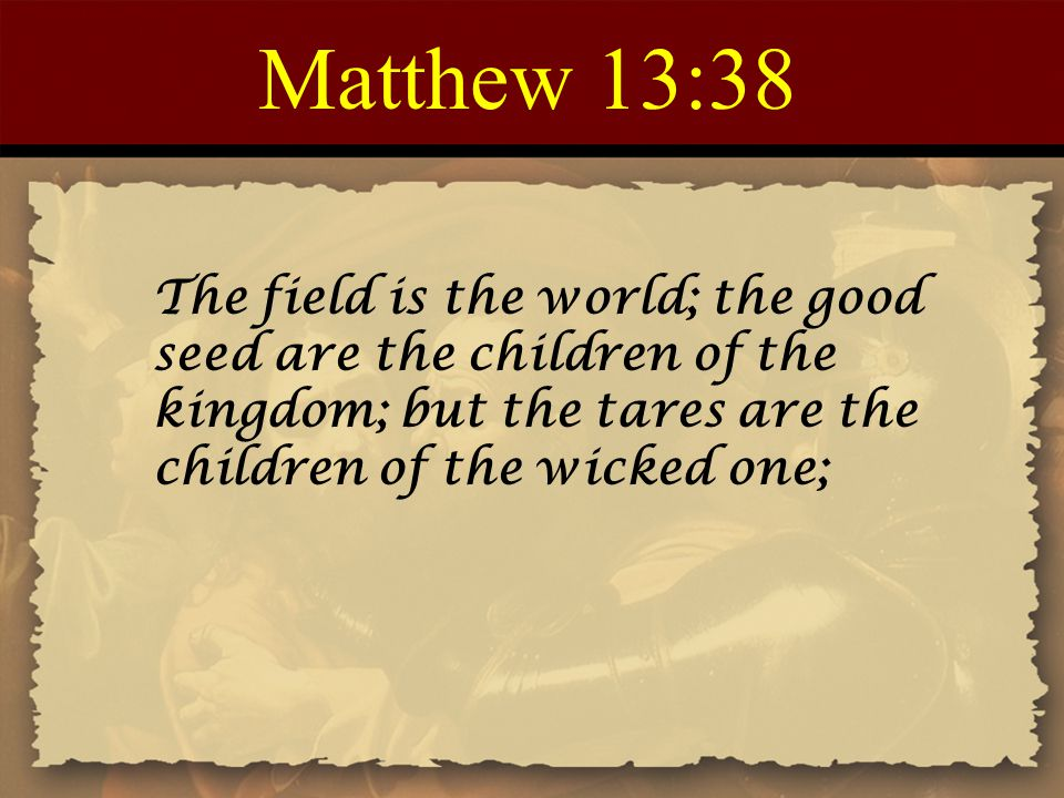Matthew 13:38 The field is the world; the good seed are the children of the kingdom; but the tares are the children of the wicked one;