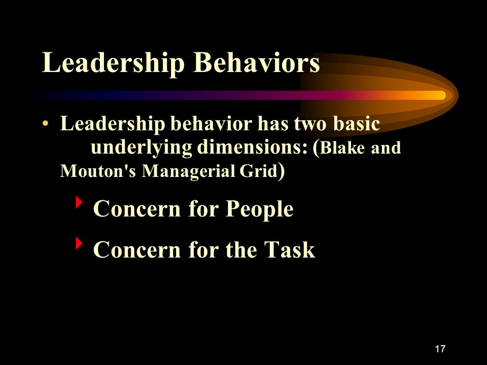Leadership Behaviors Concern for People Concern for the Task