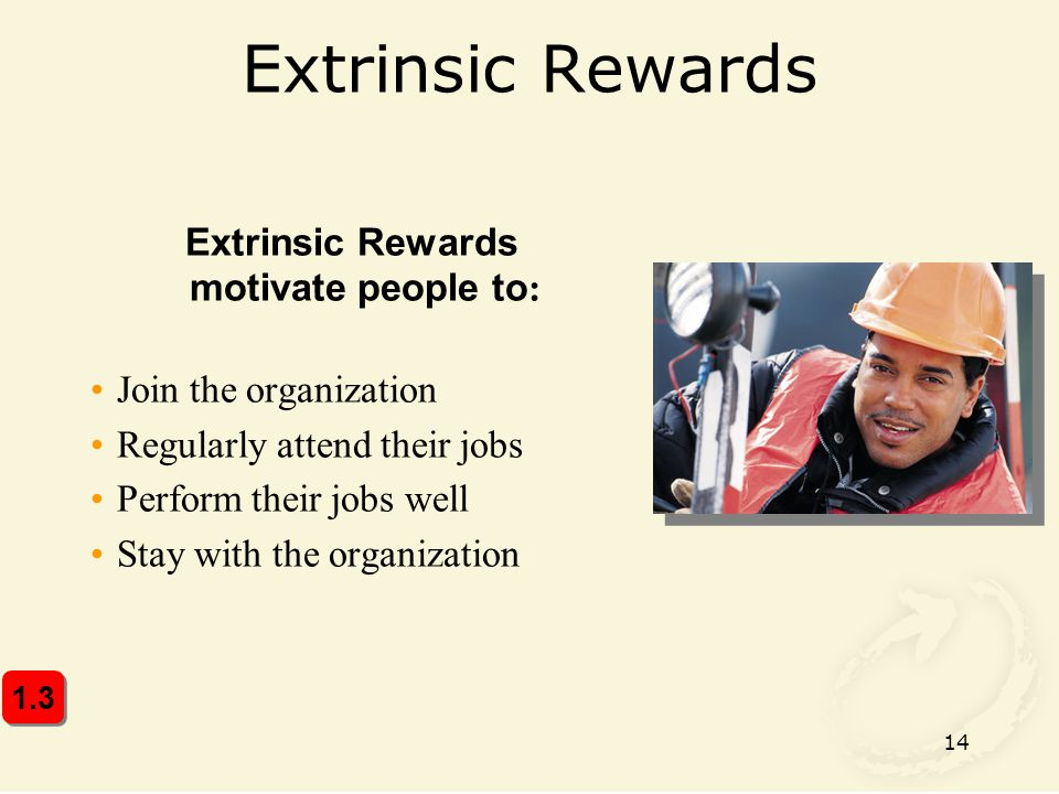 Extrinsic Rewards motivate people to: