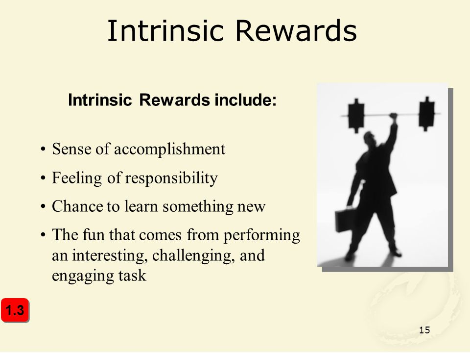 Intrinsic Rewards include: