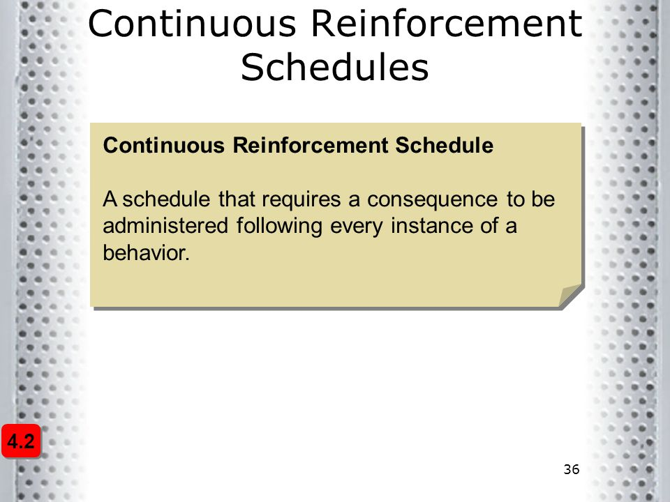 Continuous Reinforcement Schedules
