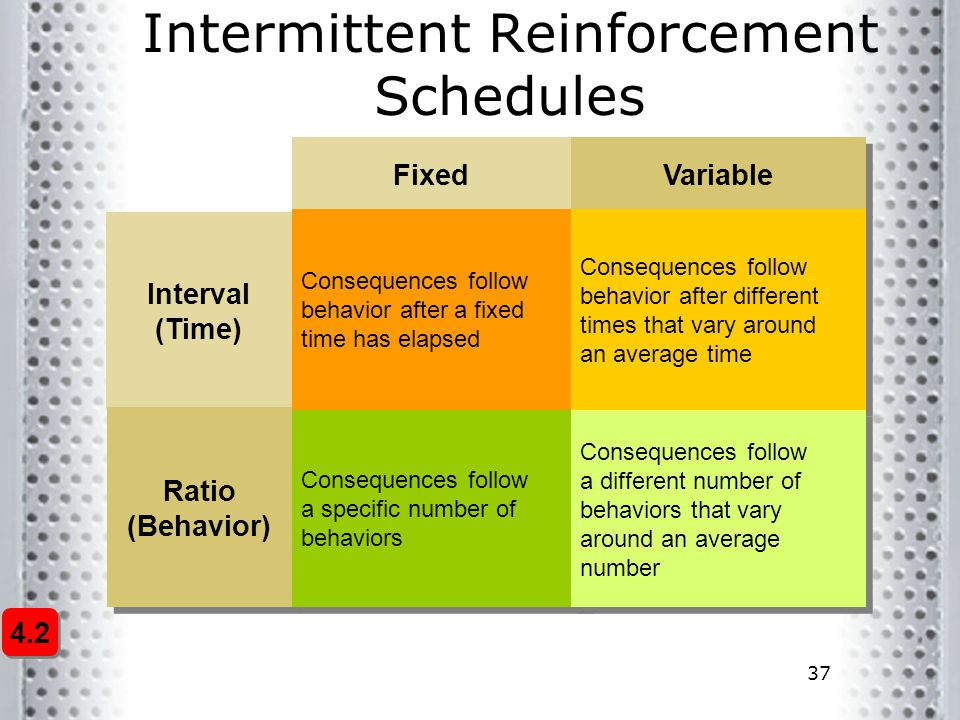Intermittent Reinforcement Schedules