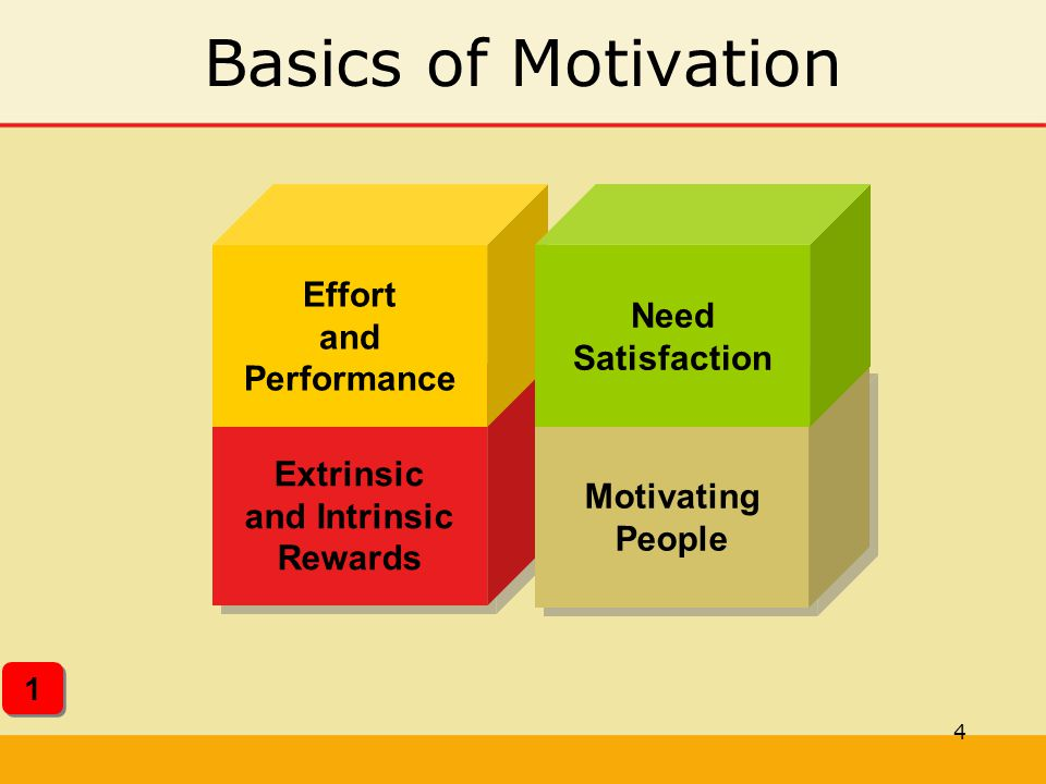 Extrinsic and Intrinsic Effort and Performance