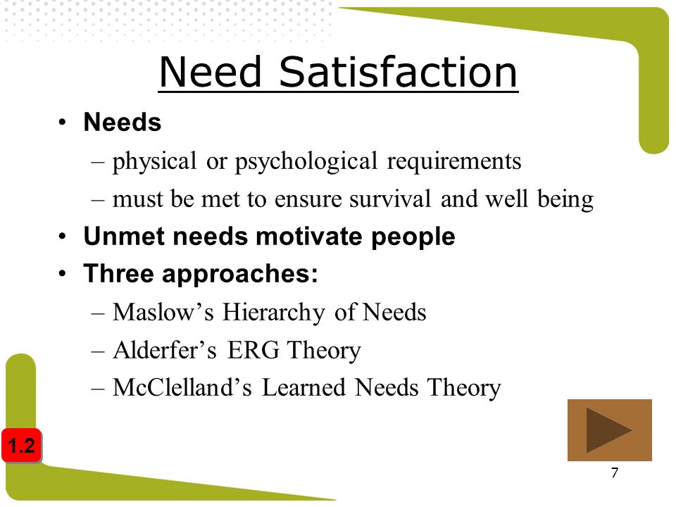 Need Satisfaction Needs physical or psychological requirements