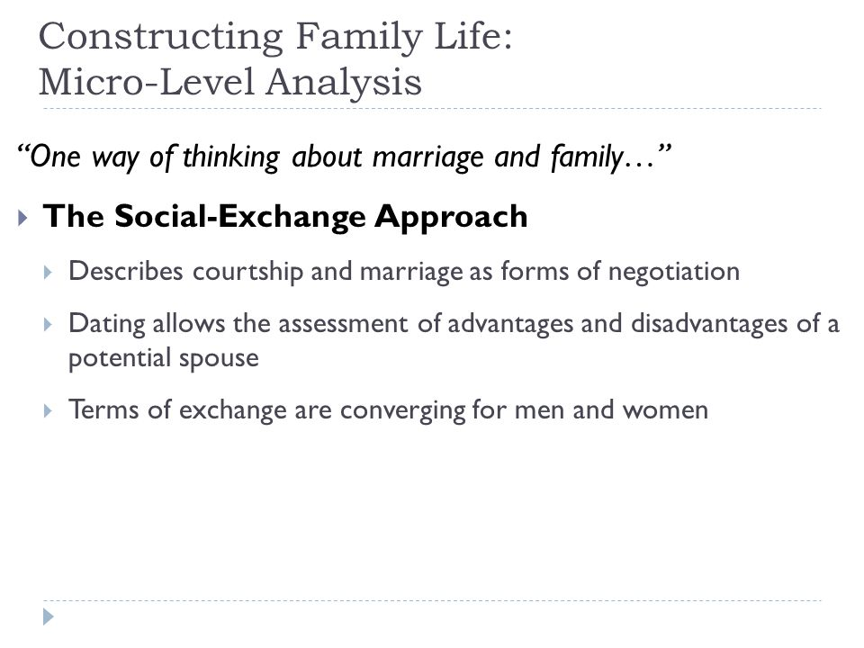 Constructing Family Life: Micro-Level Analysis