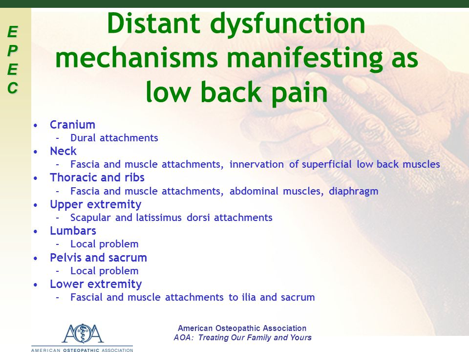 Distant dysfunction mechanisms manifesting as low back pain