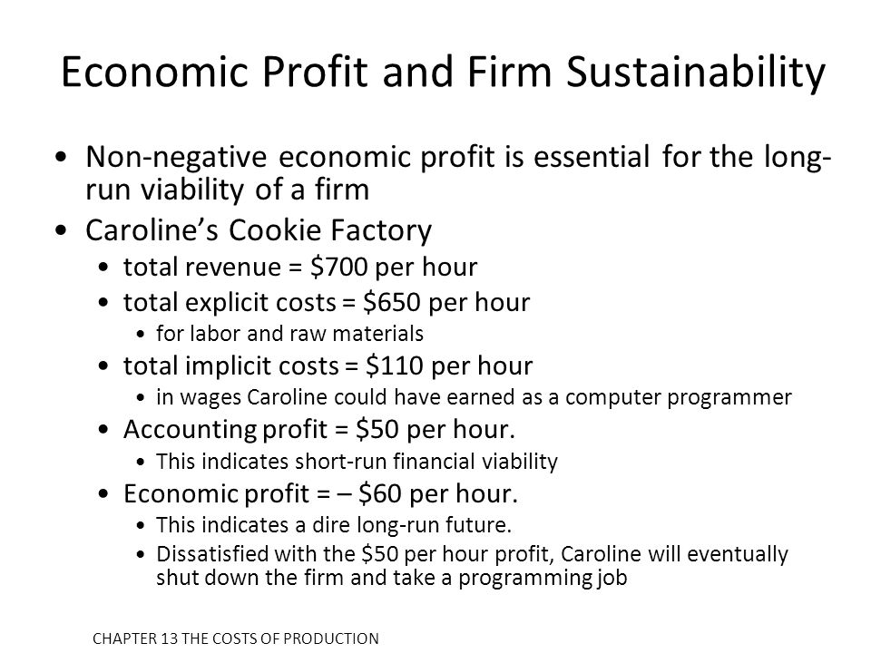 Economic Profit and Firm Sustainability