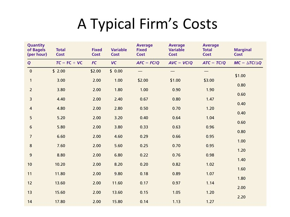A Typical Firm's Costs