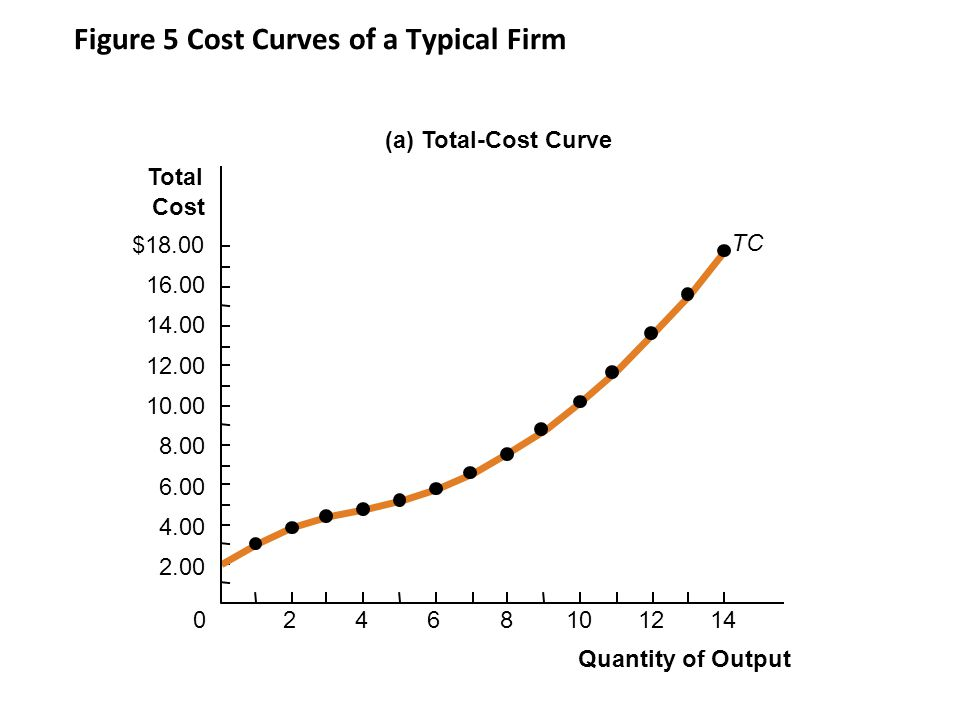 Figure 5 Cost Curves of a Typical Firm