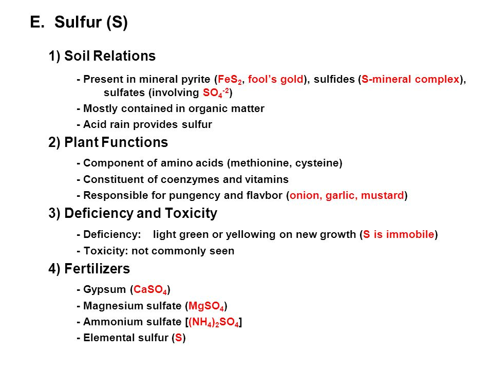 1) Soil Relations E. Sulfur (S)