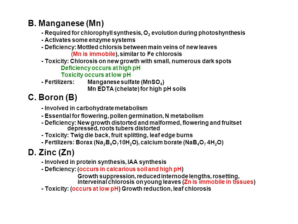 B. Manganese (Mn) D. Zinc (Zn) - Involved in carbohydrate metabolism