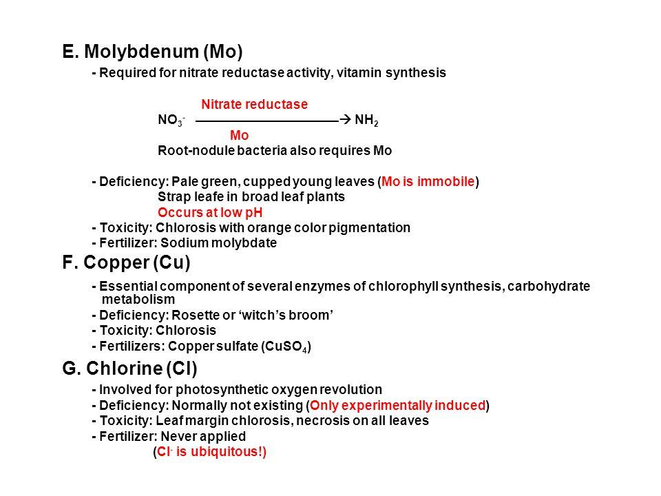 E. Molybdenum (Mo) G. Chlorine (Cl)