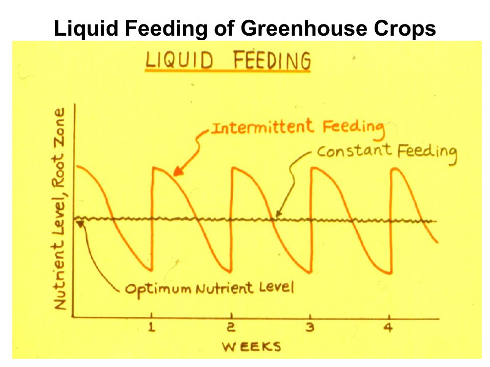Liquid Feeding of Greenhouse Crops