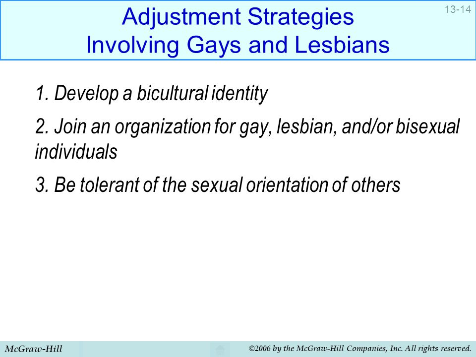 Adjustment Strategies Involving Gays and Lesbians