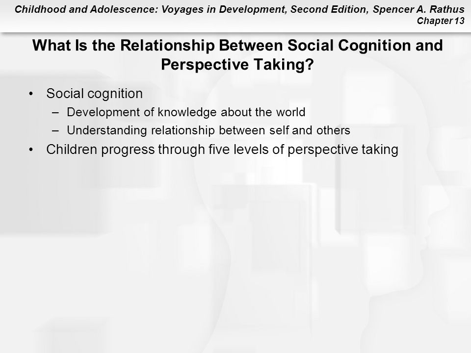 What Is the Relationship Between Social Cognition and Perspective Taking