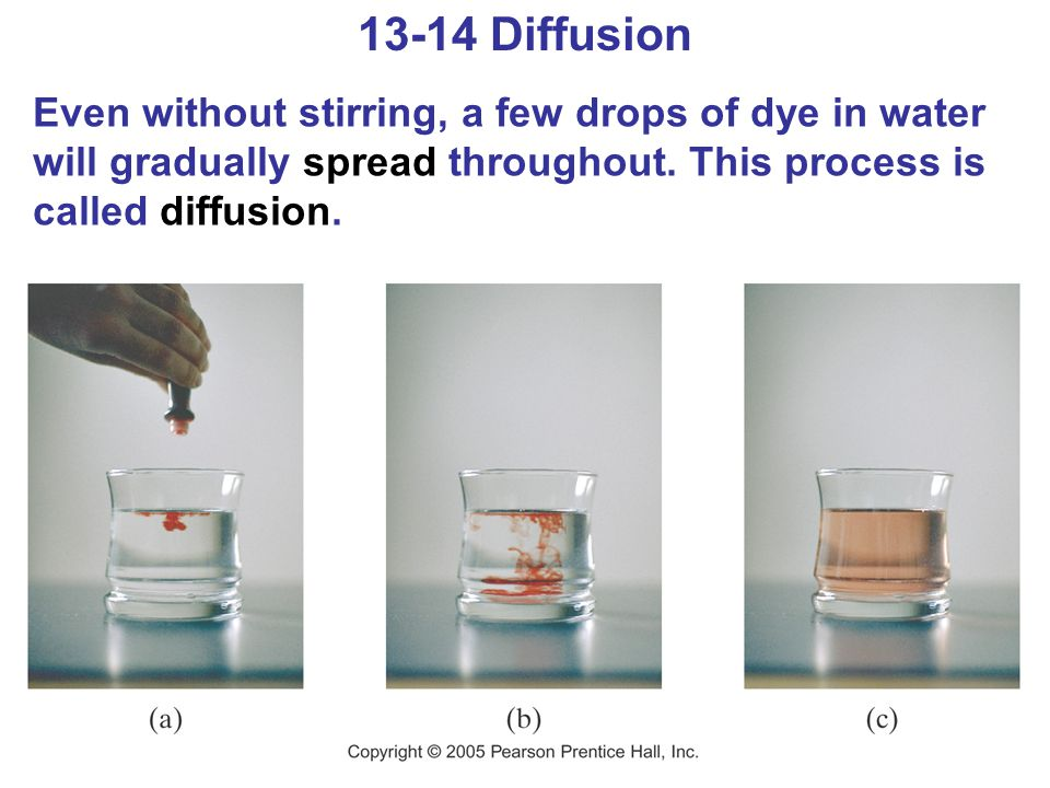 13-14 Diffusion Even without stirring, a few drops of dye in water will gradually spread throughout.