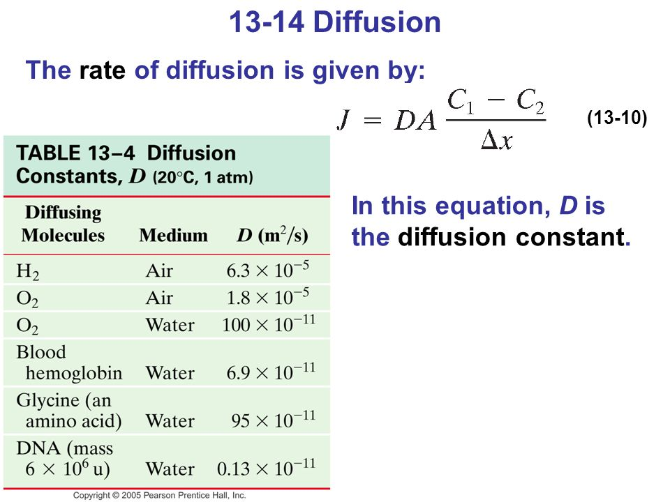 13-14 Diffusion The rate of diffusion is given by: