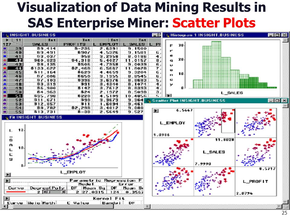 Visualization of Data Mining Results in SAS Enterprise Miner: Scatter Plots