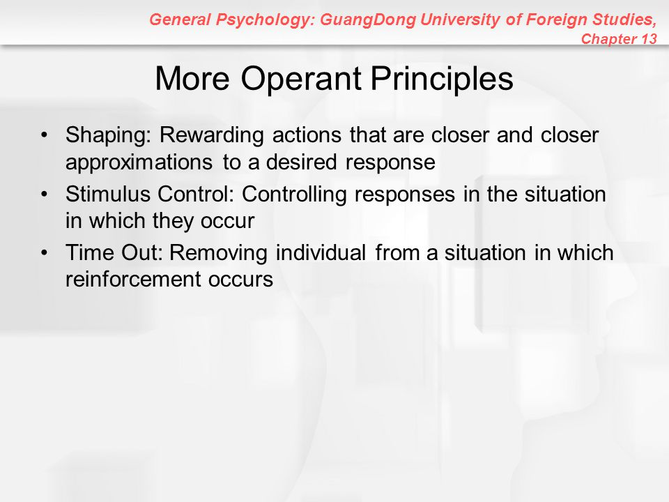 More Operant Principles