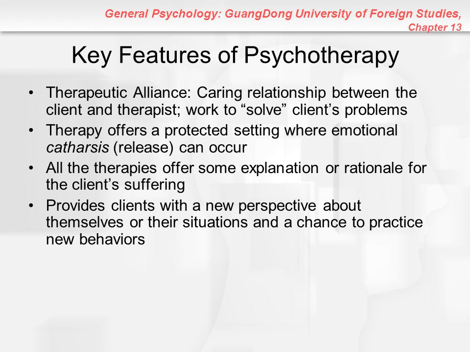 Key Features of Psychotherapy