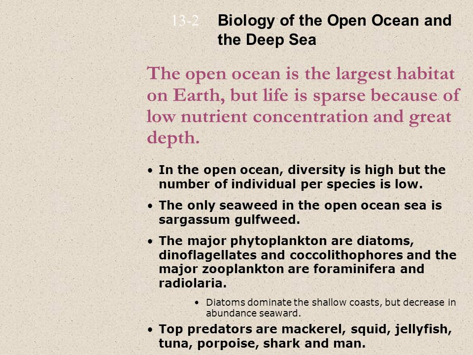 13-2 Biology of the Open Ocean and the Deep Sea.