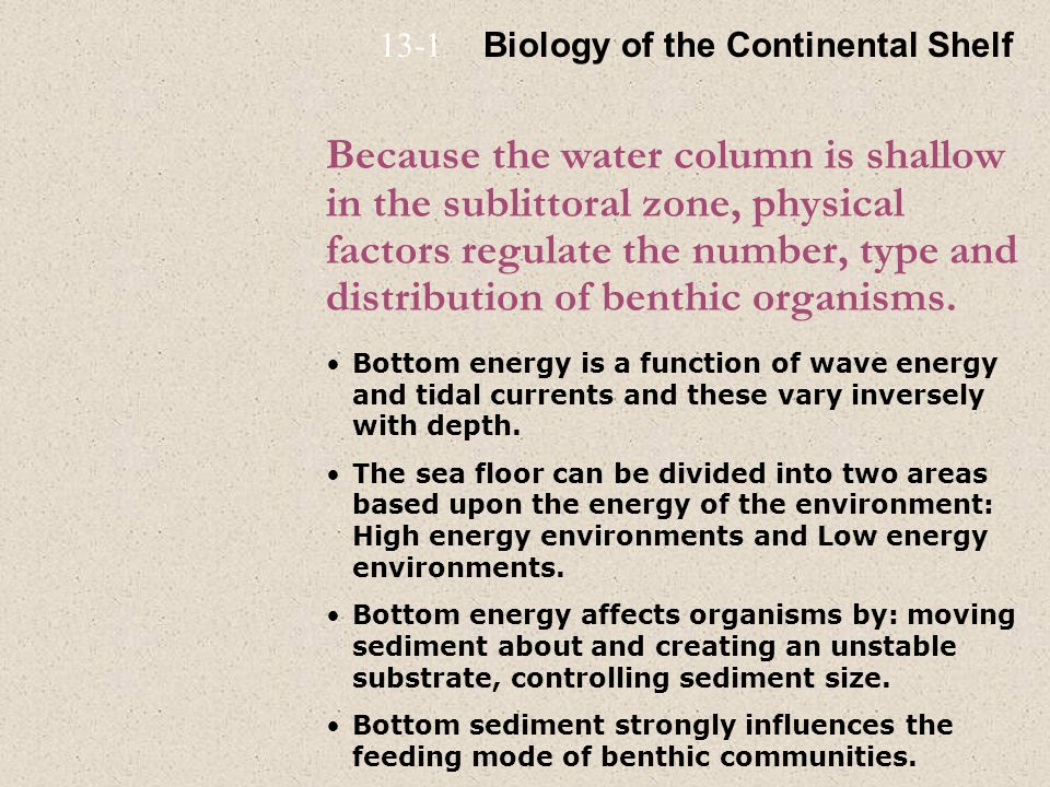13-1 Biology of the Continental Shelf.