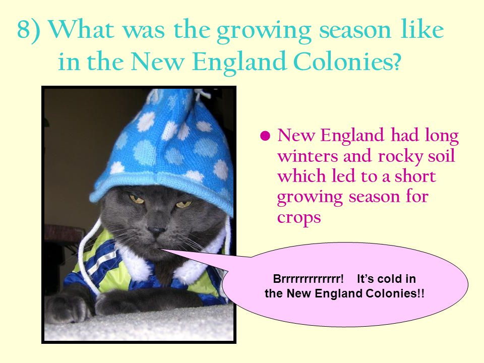 8) What was the growing season like in the New England Colonies