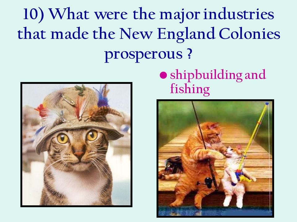 10) What were the major industries that made the New England Colonies prosperous