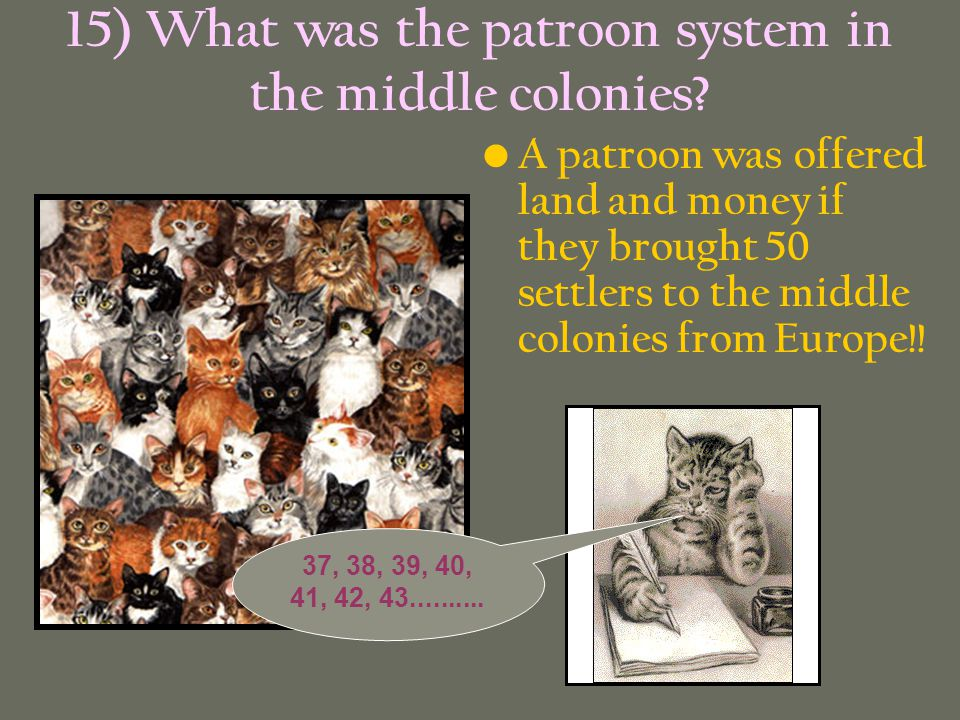 15) What was the patroon system in the middle colonies
