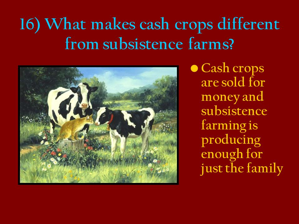 16) What makes cash crops different from subsistence farms