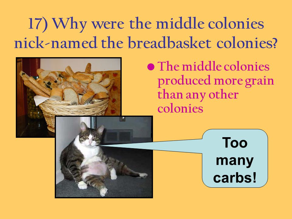 17) Why were the middle colonies nick-named the breadbasket colonies