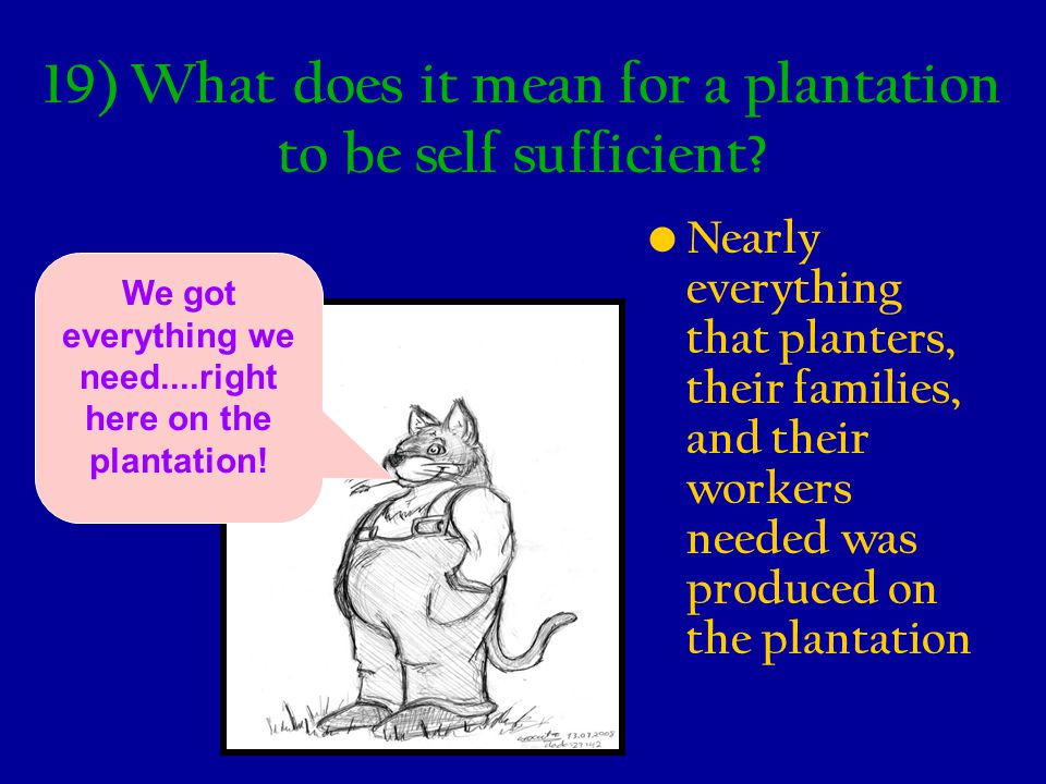 19) What does it mean for a plantation to be self sufficient