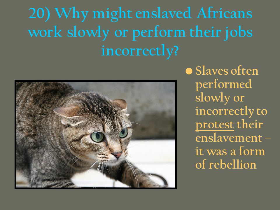 20) Why might enslaved Africans work slowly or perform their jobs incorrectly