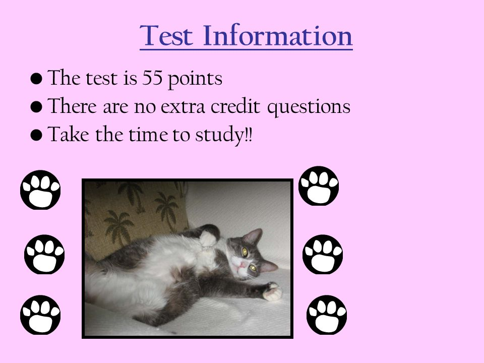 Test Information The test is 55 points