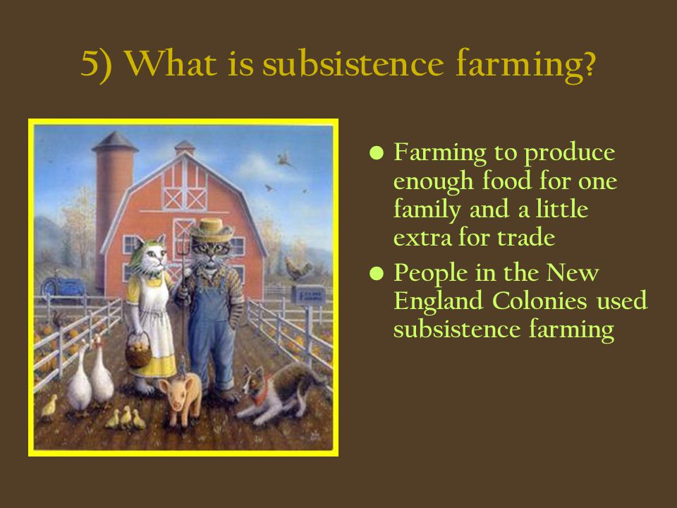 5) What is subsistence farming