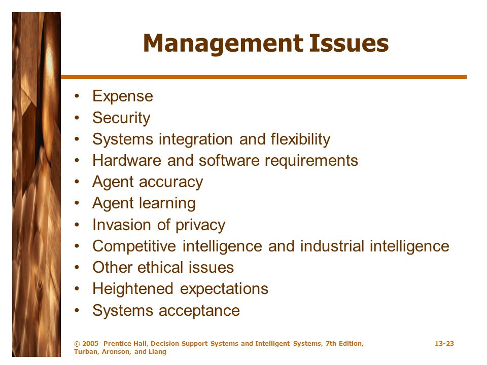 Management Issues Expense Security Systems integration and flexibility