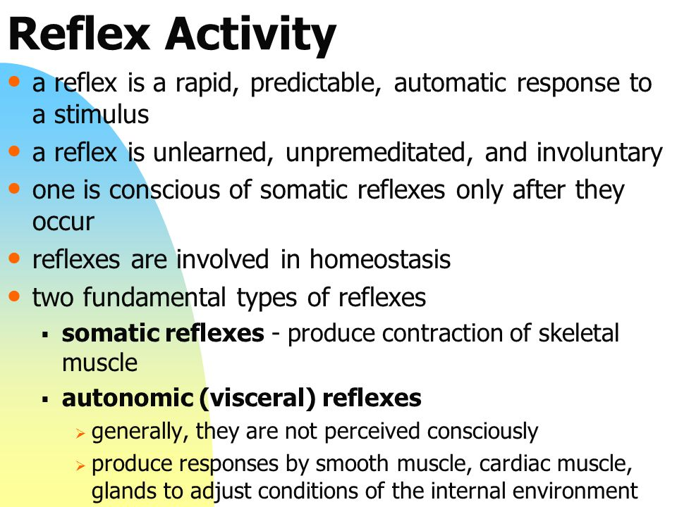 Reflex Activity a reflex is a rapid, predictable, automatic response to a stimulus. a reflex is unlearned, unpremeditated, and involuntary.
