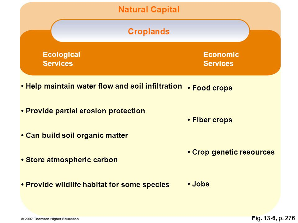 Natural Capital Croplands Ecological Services Economic Services