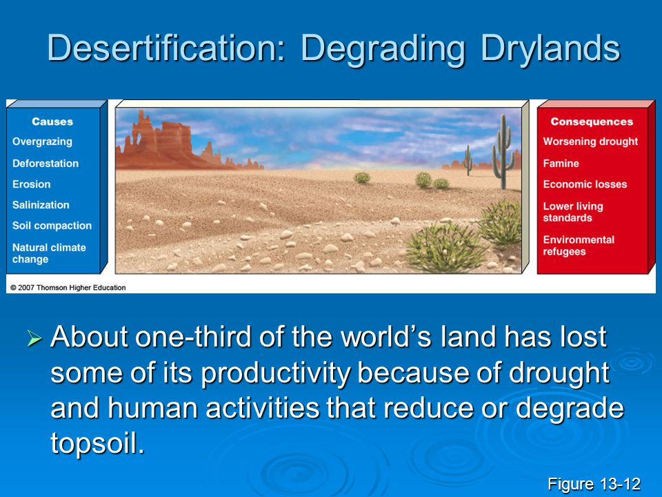 Desertification: Degrading Drylands