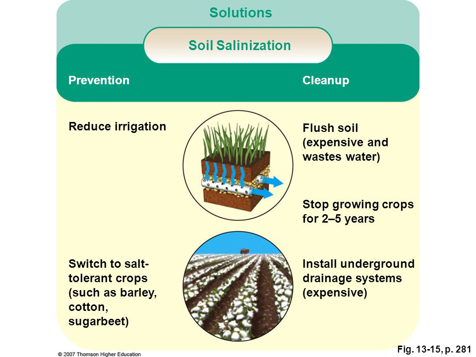 Solutions Soil Salinization Prevention Cleanup Reduce irrigation