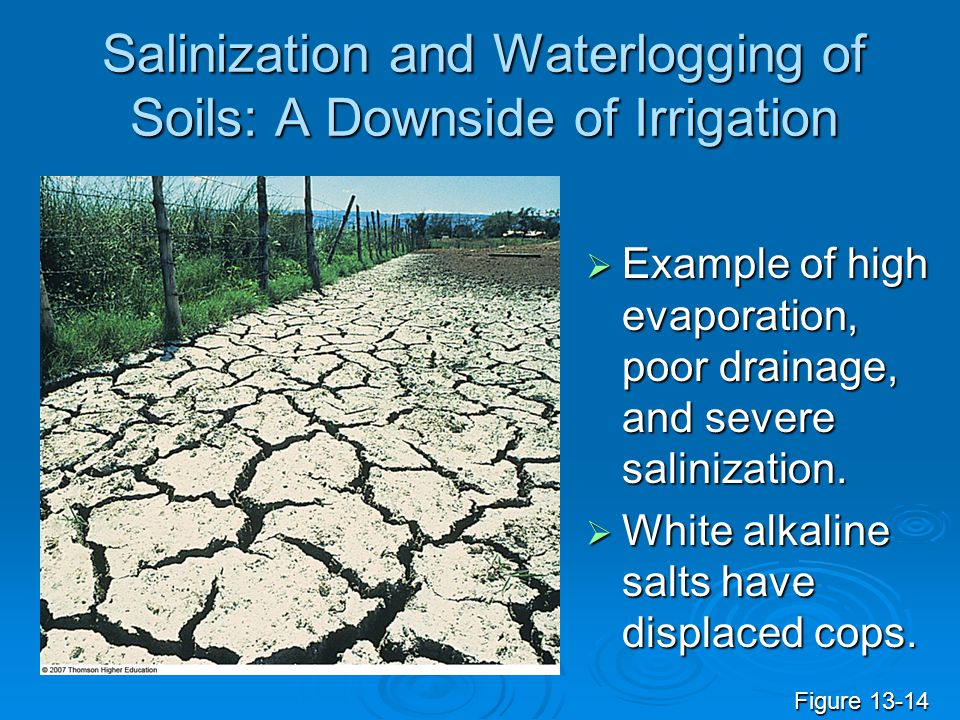 Salinization and Waterlogging of Soils: A Downside of Irrigation